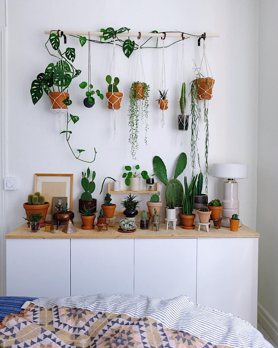 Plant Shelf Above Couch
