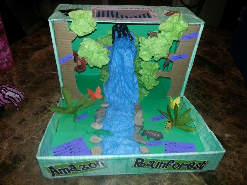 1000+ ideas about Rainforest Crafts on Pinterest | Rainforests ...