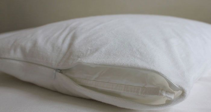Bed Bug Pillow Cover Stunning Best Pillow Protector Reviews Bed Bug Allergy And Waterproof Design Inspiration