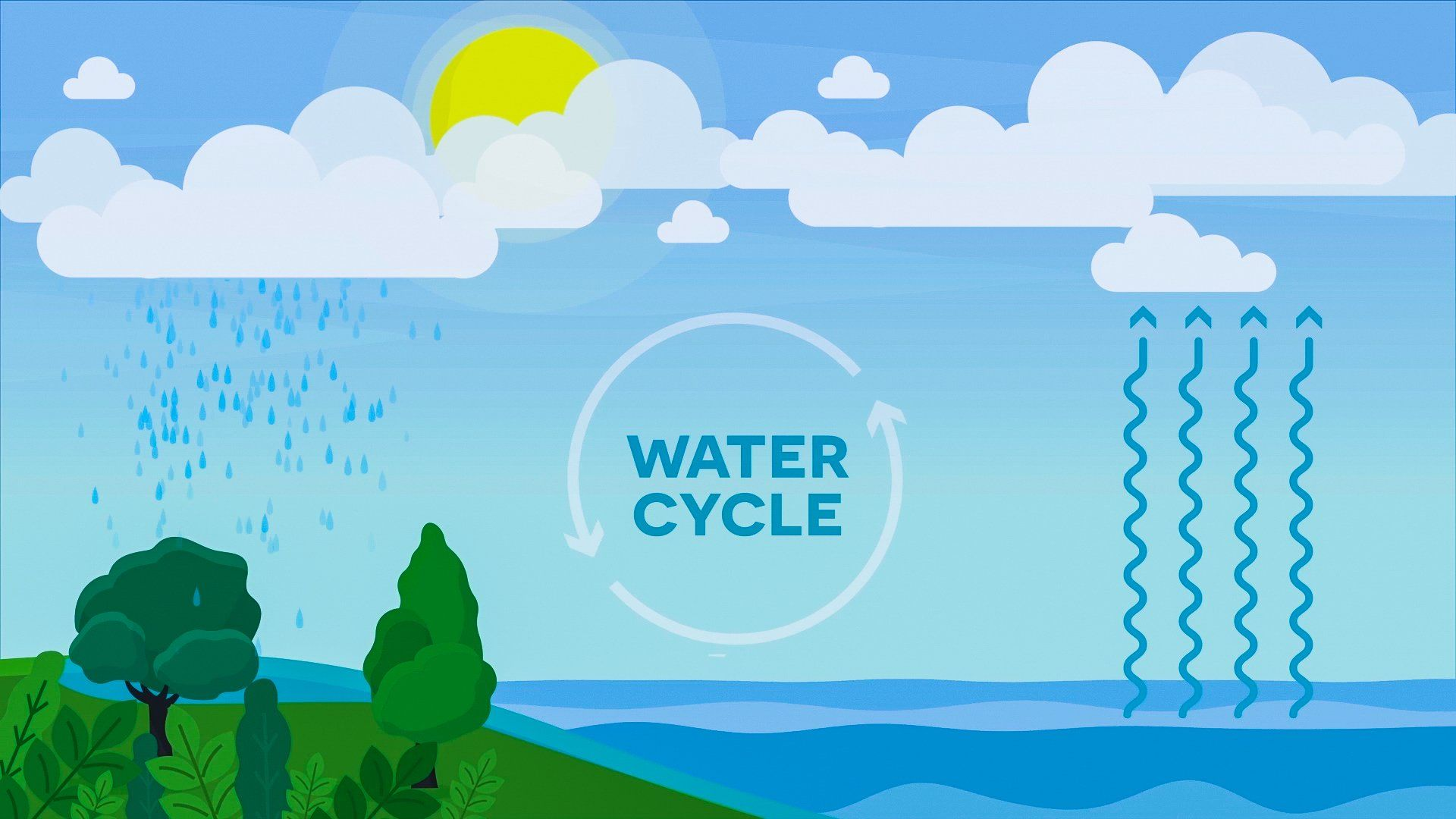 Water Cycle Definition In