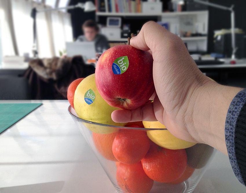 Kiwi Ecologico En La Empresa Fruita Fruit Eco Ecologia