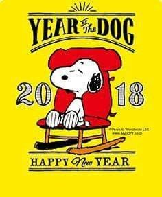 Image result for Happy new year snoopy