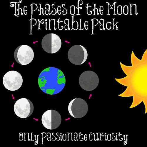 picture relating to Moon Phases Printable known as Cost-free Moon Stages Printables and Lesson Science: Sunlight