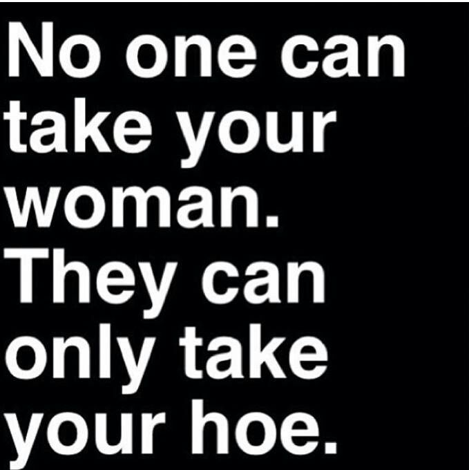 Cant turn a hoe into a housewife | HA!!!! | True words ...