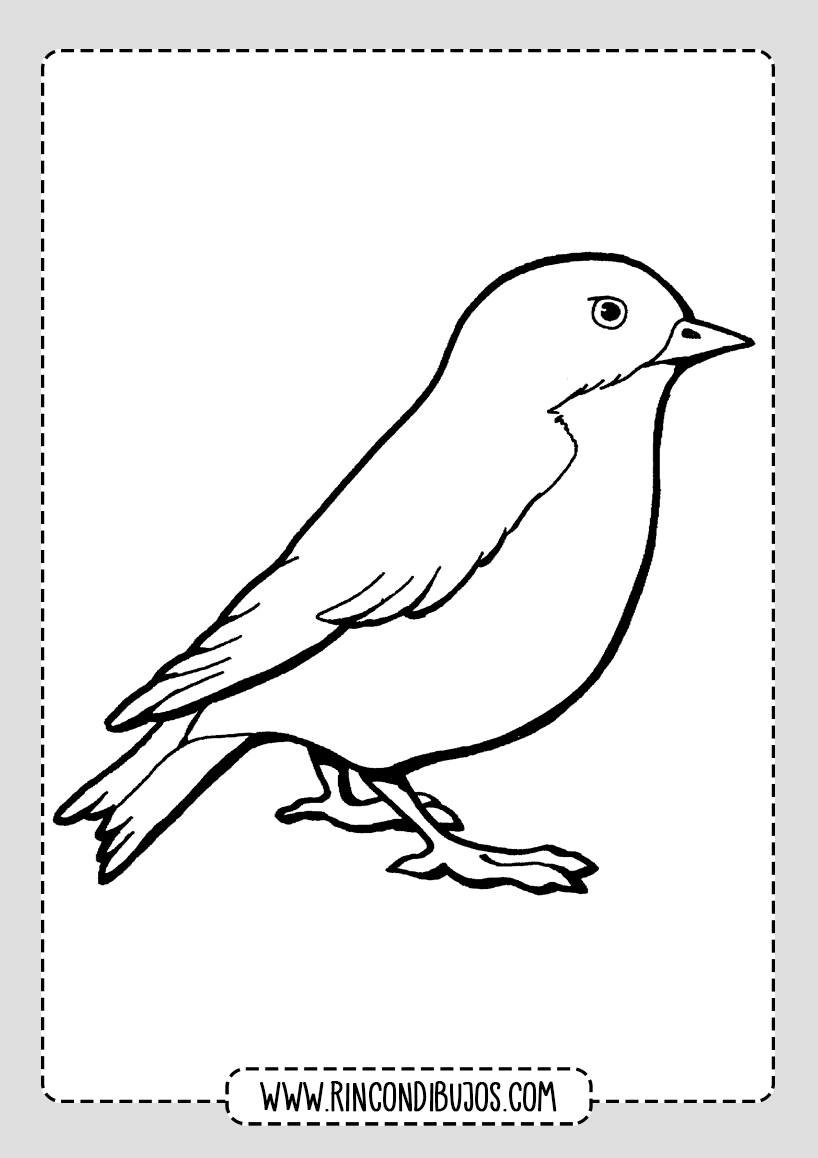 Dibujos De Pajaros Para Pintar Rincon Dibujos En 2020 Dibujos De Pajaro Pajaros Para Colorear Pajaro Silueta