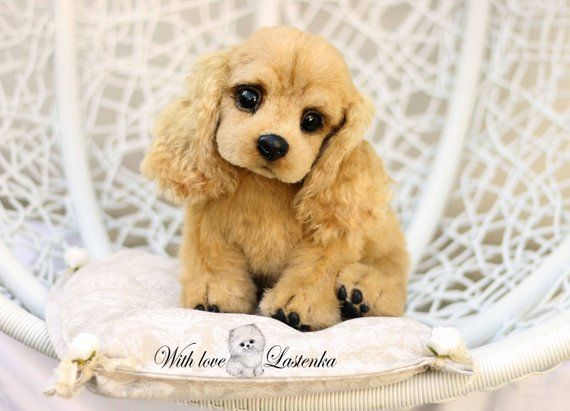 bad48be208f1 Puppy American Cocker Spaniel Leia artist OOAK collectible stuffed ...