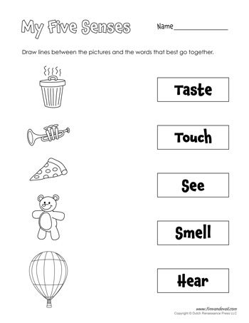 Five Senses Matching Five Senses Worksheet Senses Activities