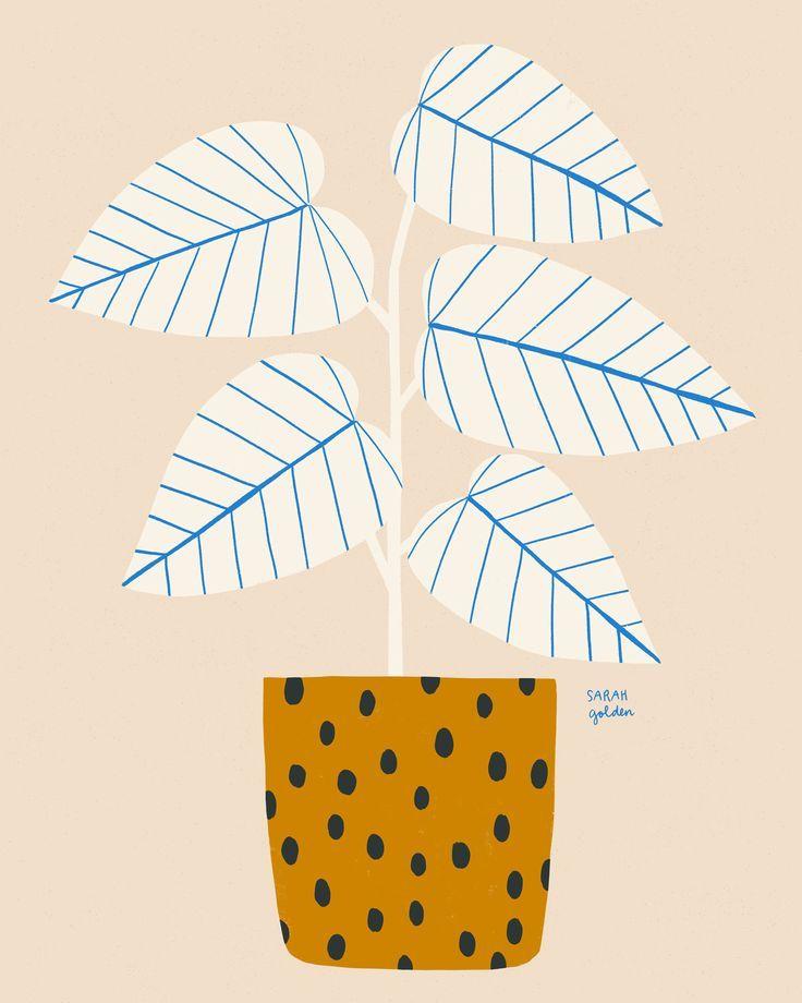 Sarah Golden. #graphicprints