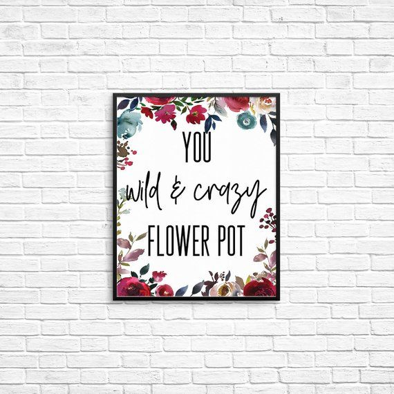 You Wild And Crazy Flower Pot