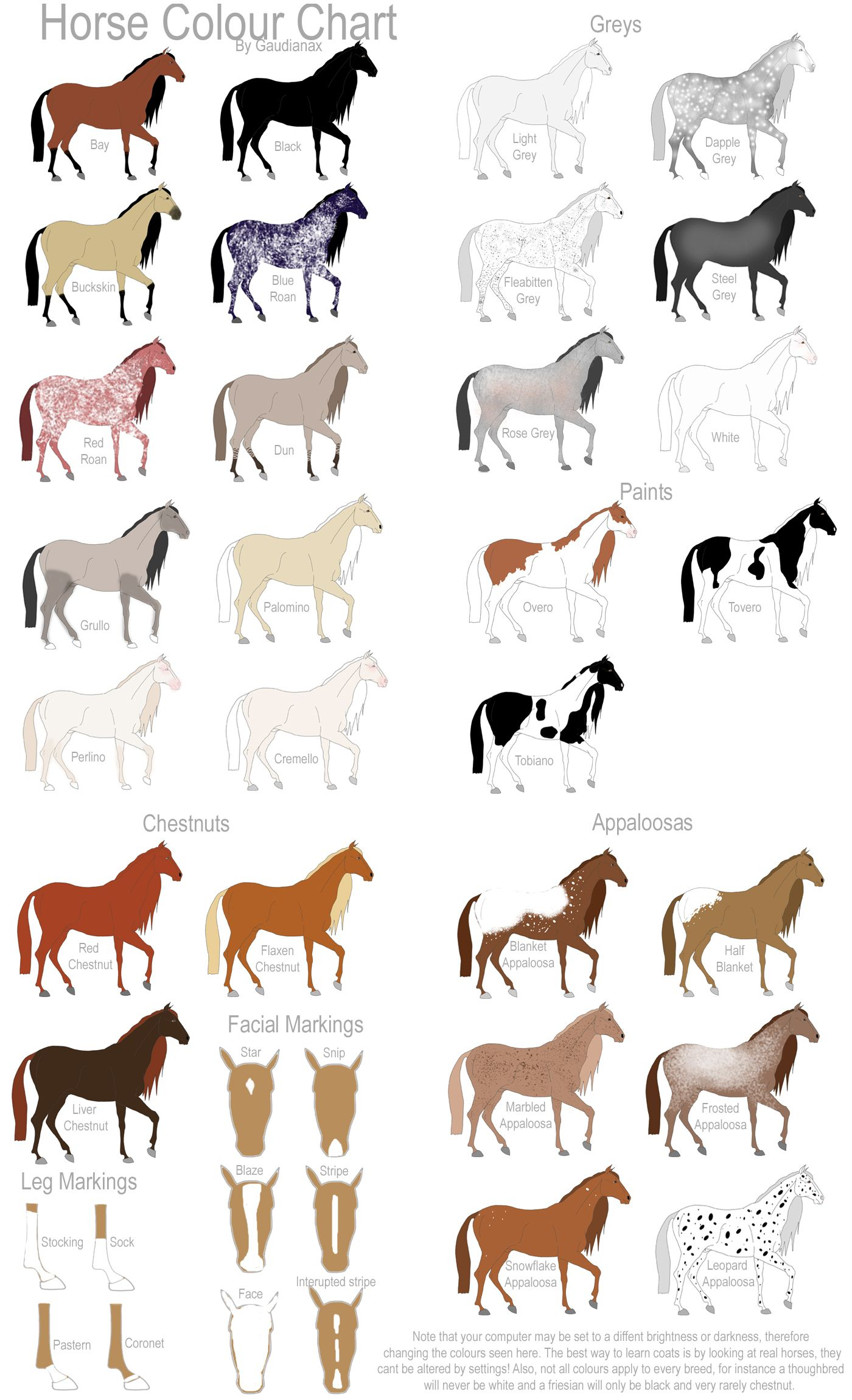 miniature show horse horse colour chart by gaurdianax places