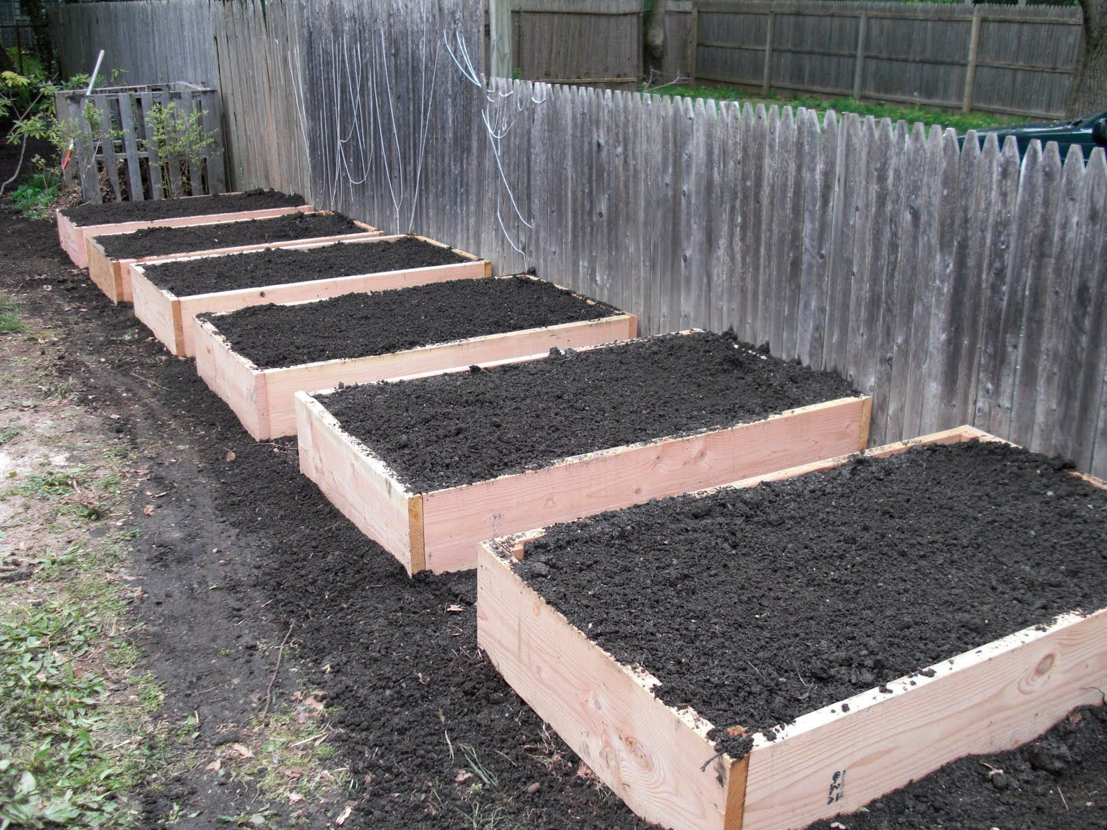 building raised bed gardens Above ground garden