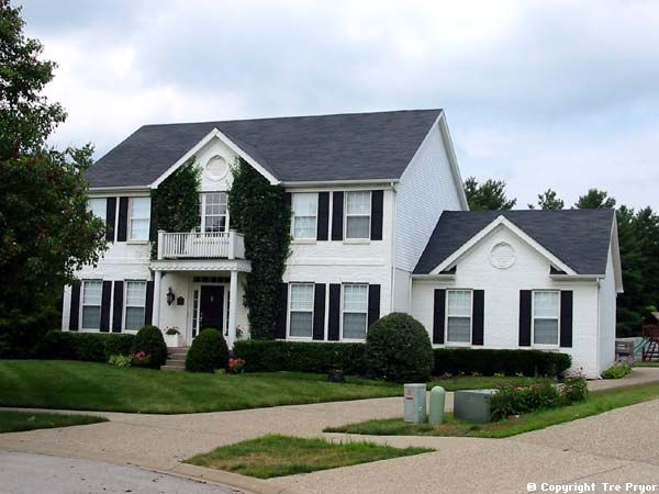 I want a white brick house with black shutters and a sage green ...