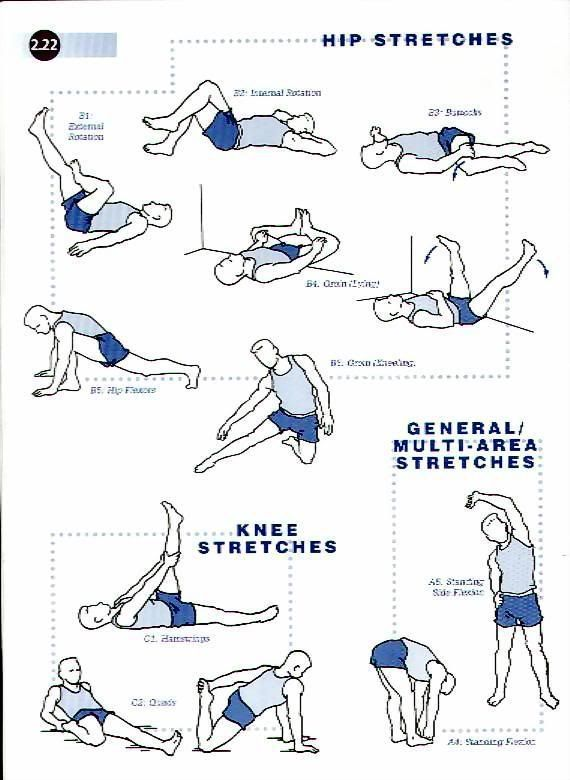 some good hip stretches I was missing   Fitness ...