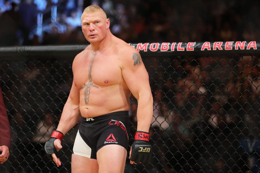 Brock Lesnar Brock Lesnar Ufc Brock Lesnar Fight Brock Lesnar