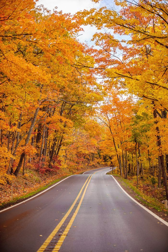 The Best Places to See Fall Leaves Within Driving Distance of NYC