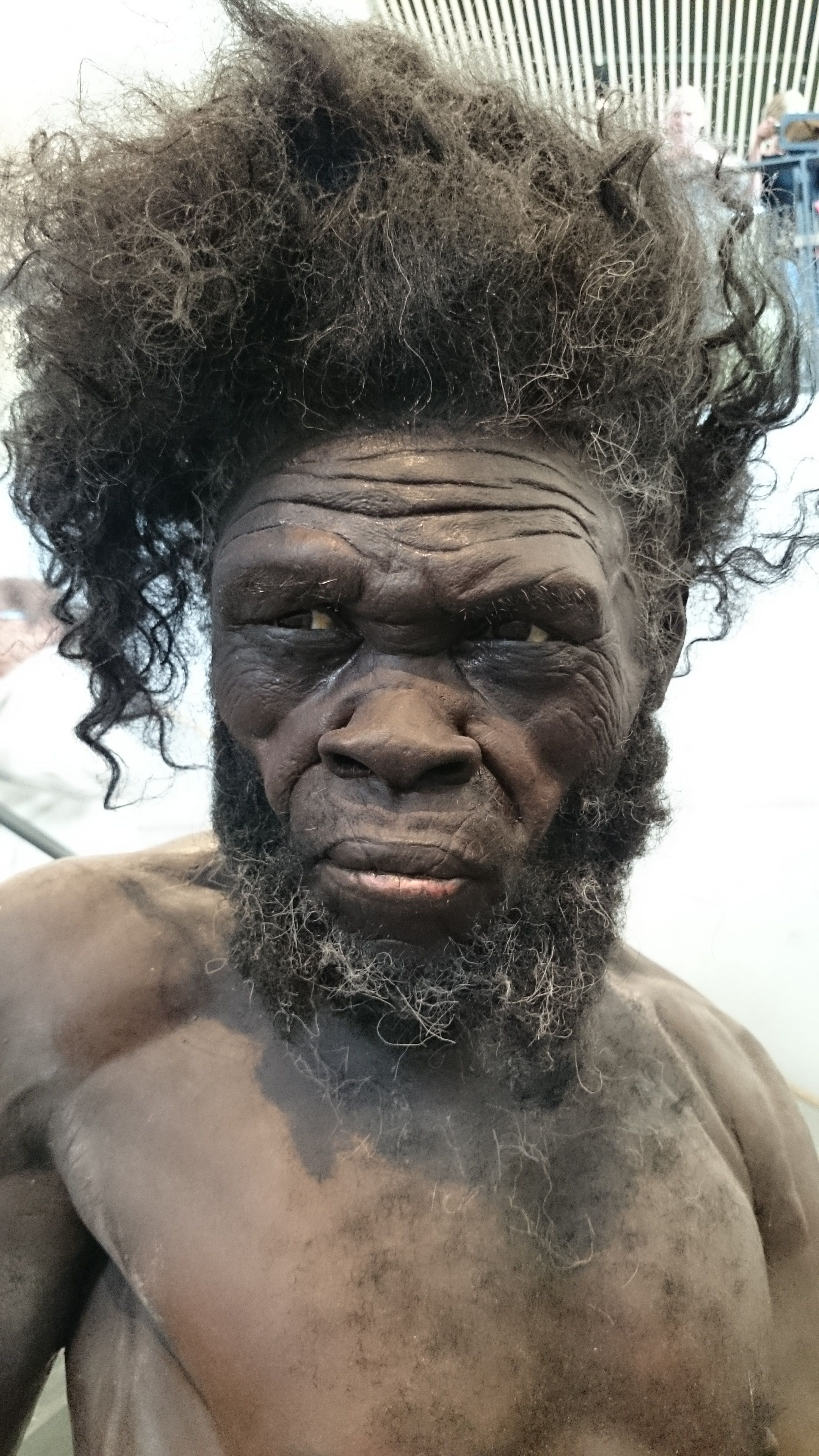 So Coool Reconstruction Of A Modern Man Found In Morocco