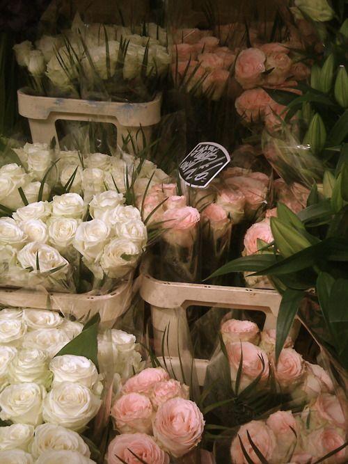 Roses Attic C 2011 In London England