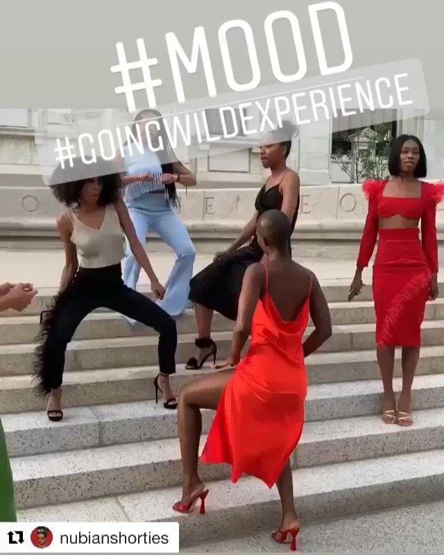 See y'all at 7pm! #goingwildexperience  IM Gallery  Drop in $15 🧚🏾♀️ #dancefitness #twerk...