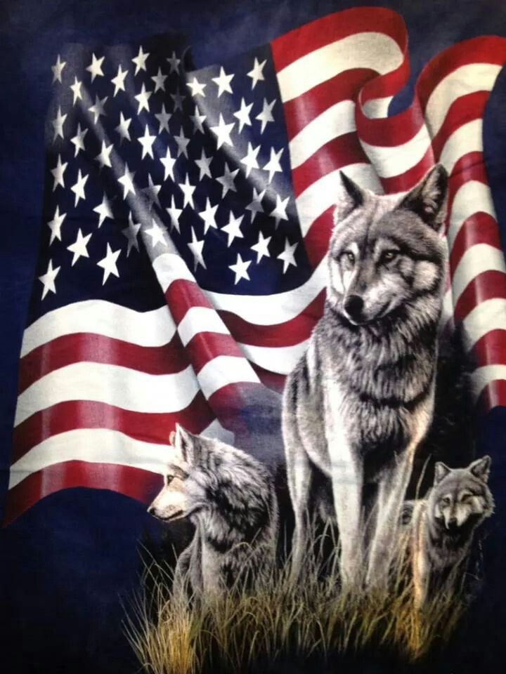 Beautiful three wolf moon flag american flag