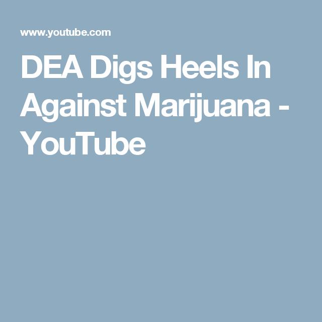 DEA Digs Heels In Against Marijuana - YouTube