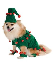 Christmas Pomeranian Puppy Costume Elf With Images Pet