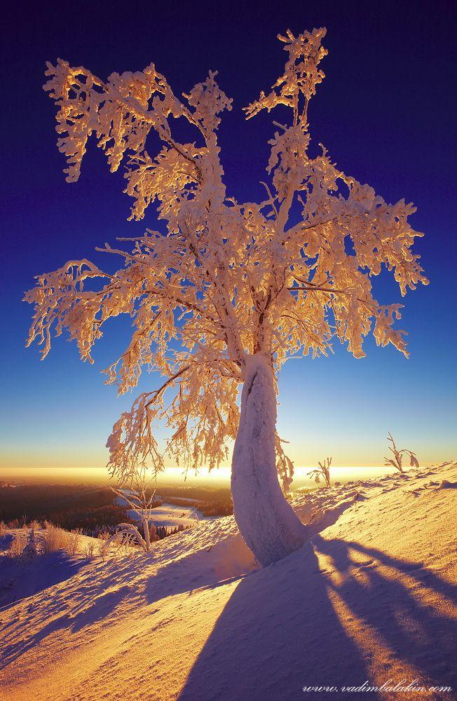 Frozen - Russia