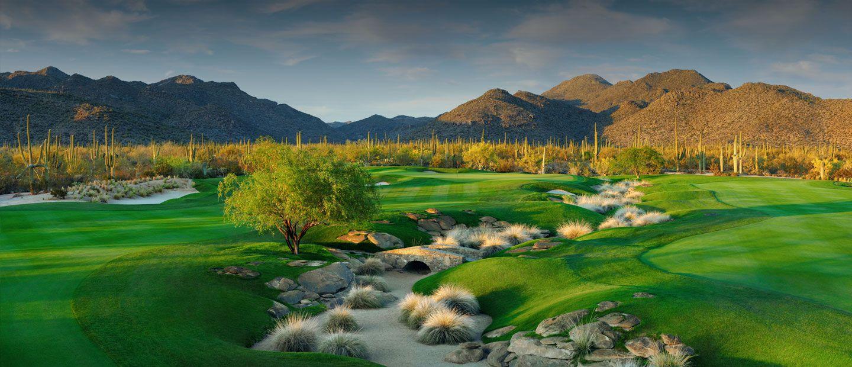 Dove Mountain Golf Course Tucson, Arizona Golf courses