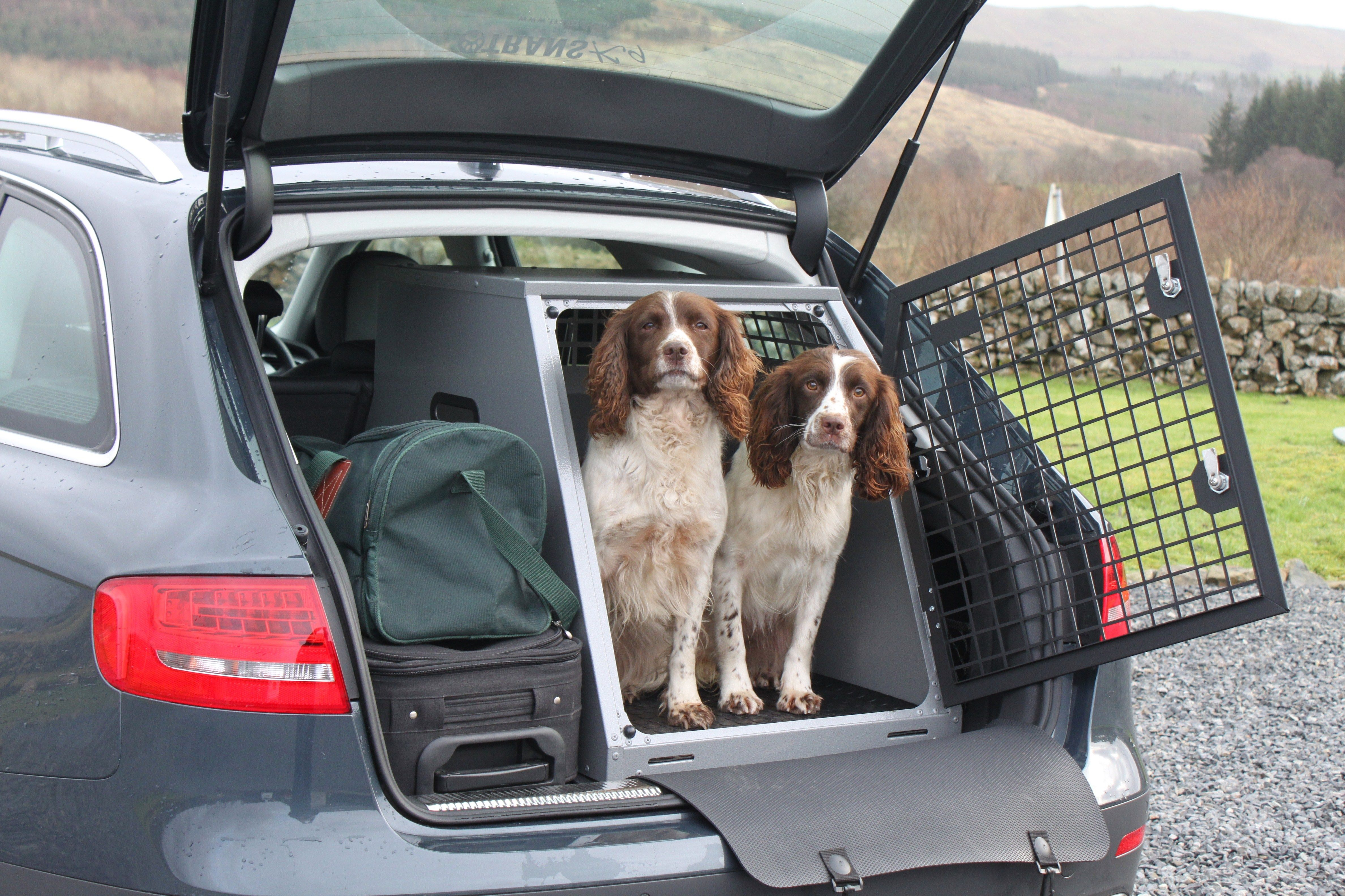 Transk9 B23 Audi A4 Avant Dog Crate Dog Transit Box Dog Cage Www