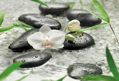 Fototapete PURE 368x254 Feng Shui weisse Orchidee Steine Wasser schwarze Kiesel