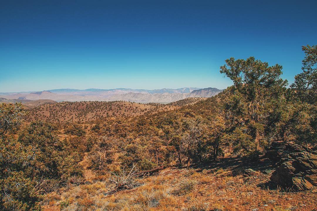 Write a caption    #tb #california #last #summer #desert #hot