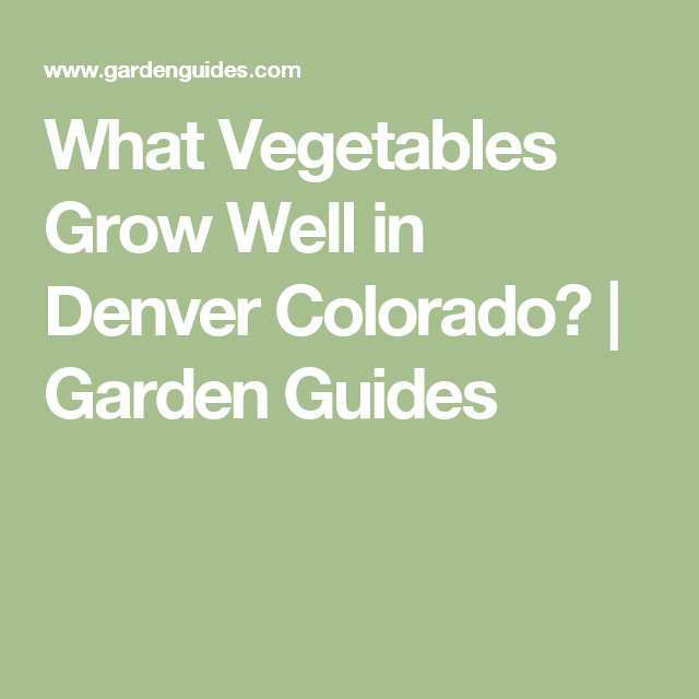 What Vegetables Grow Well In Denver Colorado? | Garden Guides