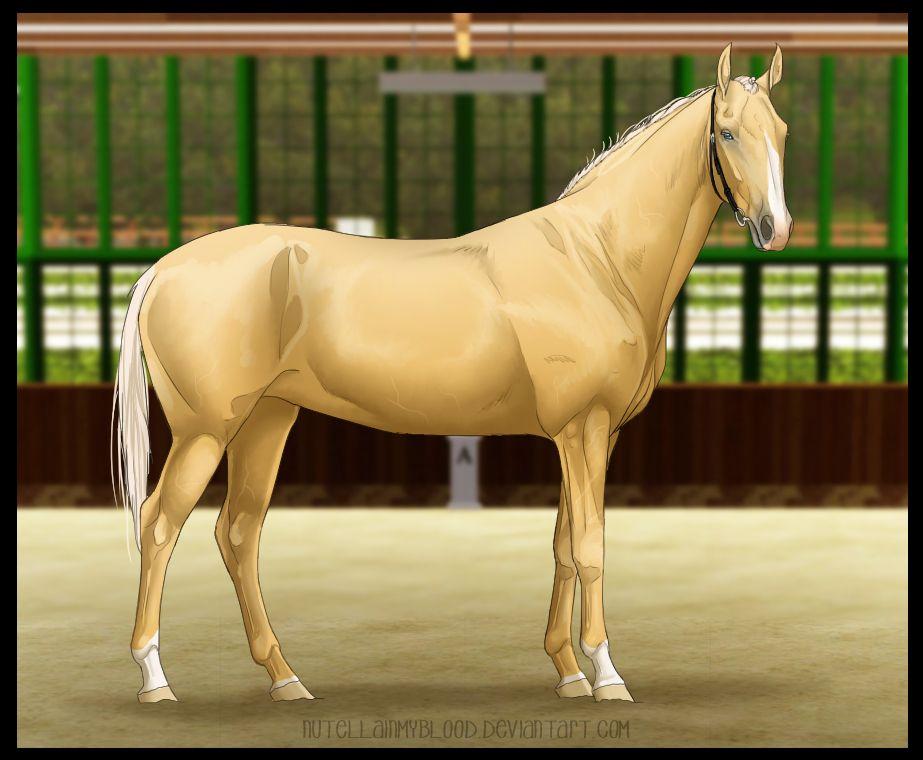 Cefc Ilb 019 Ayleanne By Nimbynimb Horse Drawings Horse Art Horses