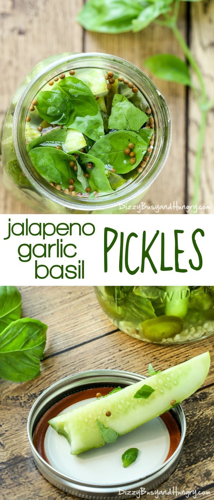 Jalapeno Garlic Basil Pickles | http://DizzyBusyandHungry.com - Tangy, zesty, and crunchy pickles, easy to make and ready for snacking the very next day!