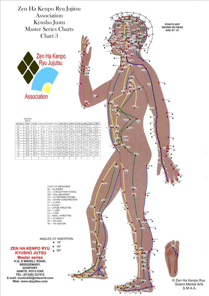 Pressure Point Chart Mersnoforum