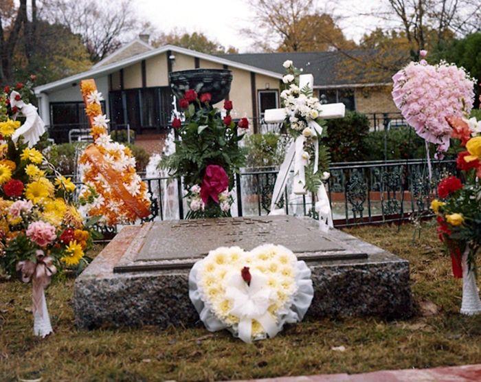 Elvis Grave Circa 1977 Elvis Presley Graceland Elvis Presley Grave Elvis Death