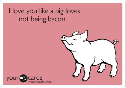 I Love You Like A Pig Loves Not Being Bacon Love You Meme Funny Me E Cards
