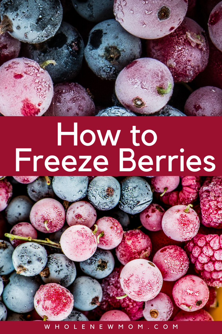 The Easiest Way to Store Blueberries (easy peasy!) Whole