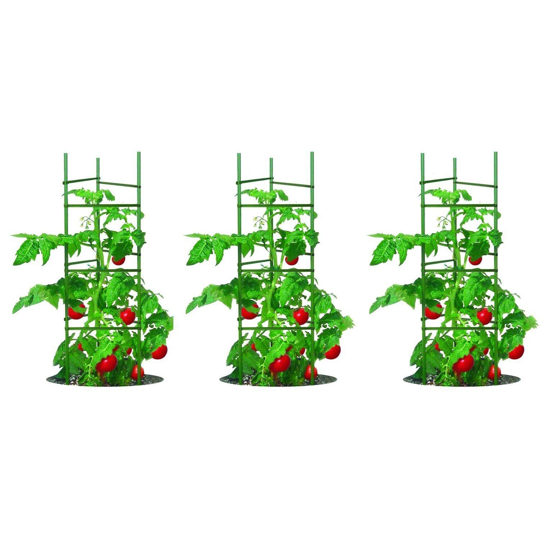 3 Pack Of Tomato Plant Cage Climbing Fruit Veggie Garden 400 x 300