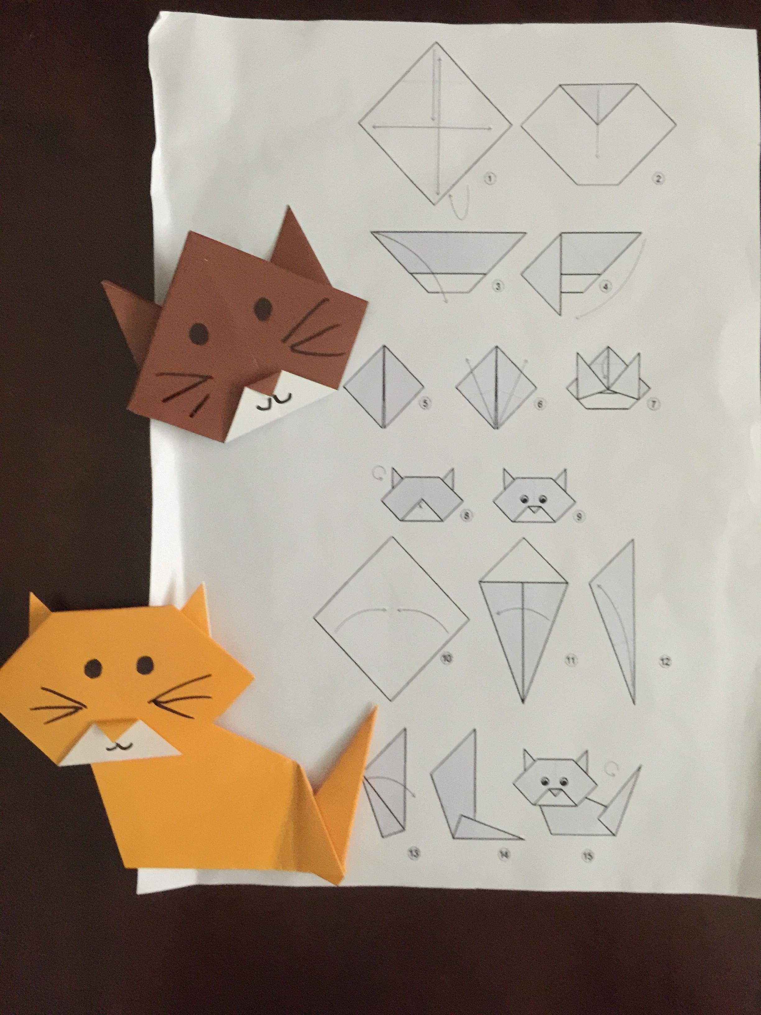 Февраля, картинки как делать кошку