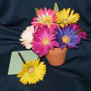 Pin By Joy Mccarron On Flowerpenoasis Com Flower Pens Flower Pens Bouquet Homemade Gifts