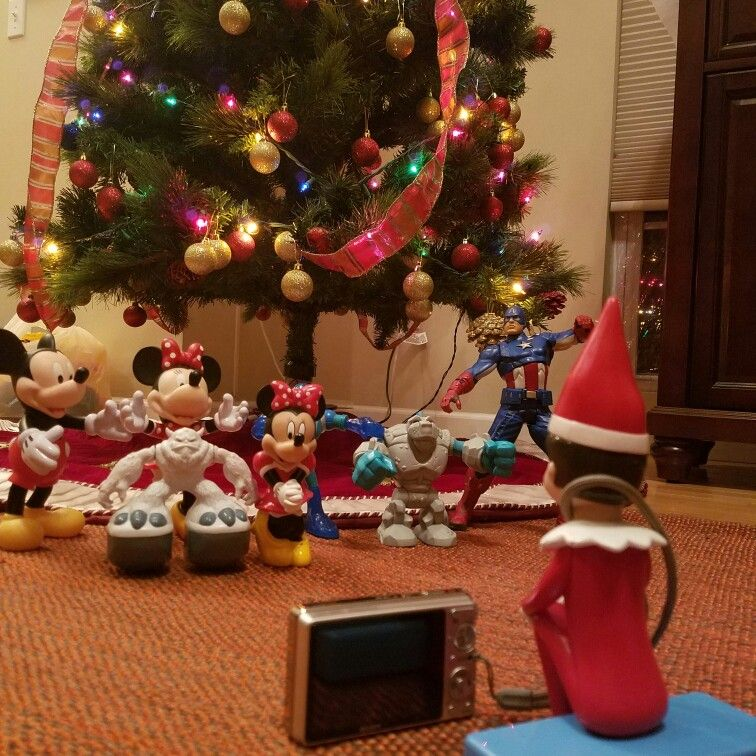 Good morning from Elf Notty  #holidays #elfstories