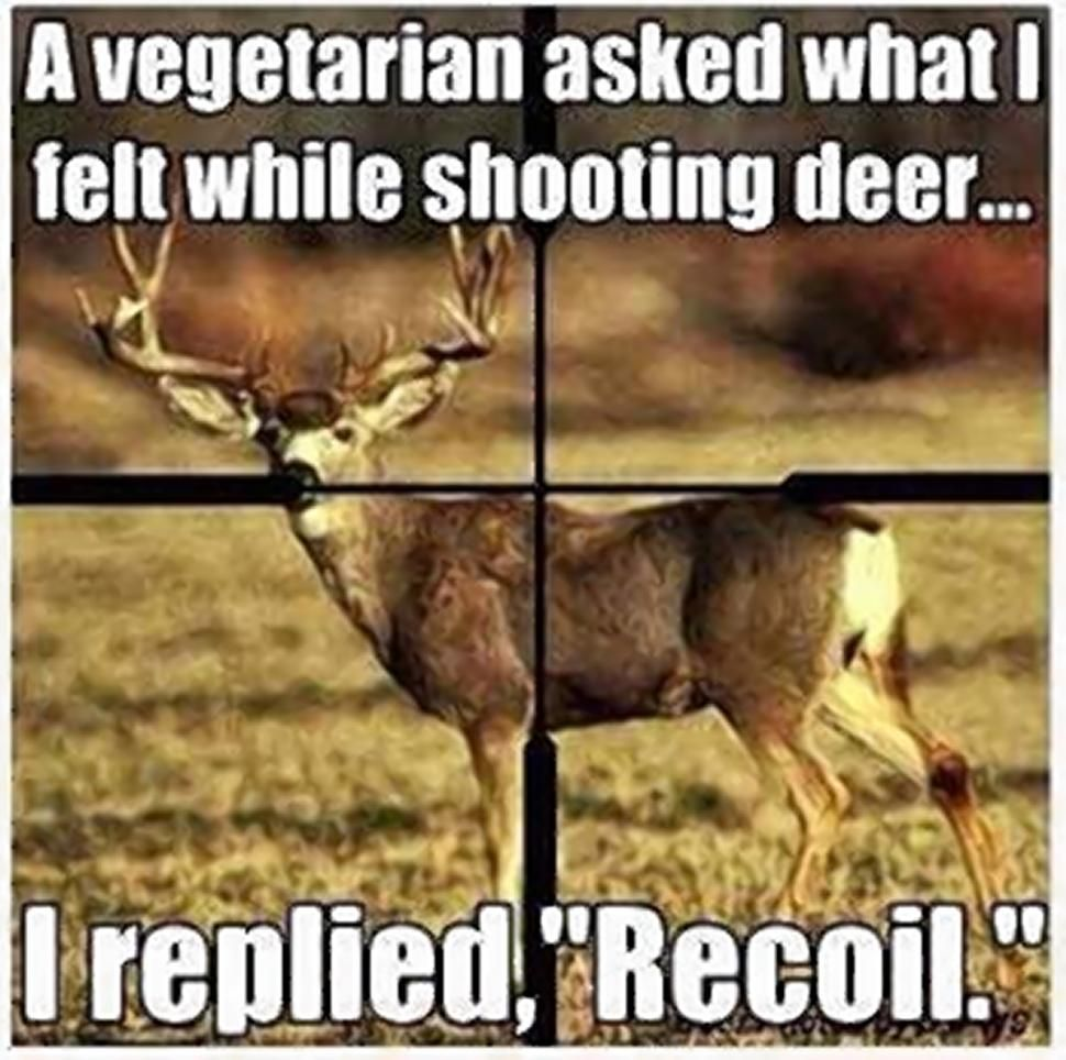 Funny Hunting Quotes Funny Quotes About Deer Seasonquotesgram  Hunting  Pinterest