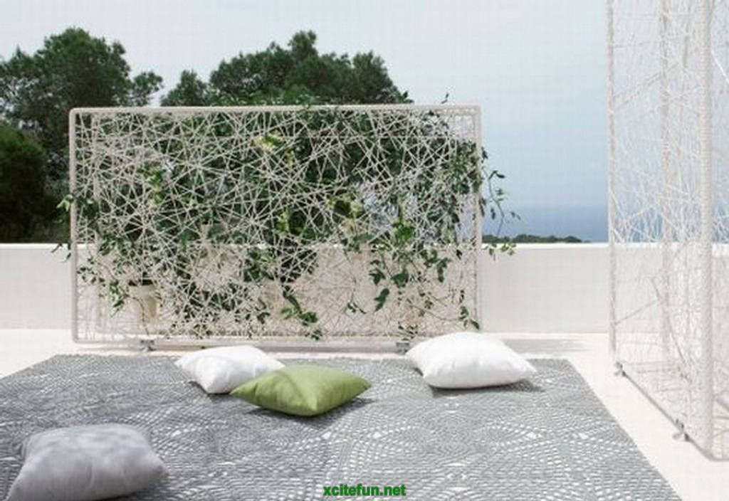 PLANTS FOR WALL DIVIDER   Google Search