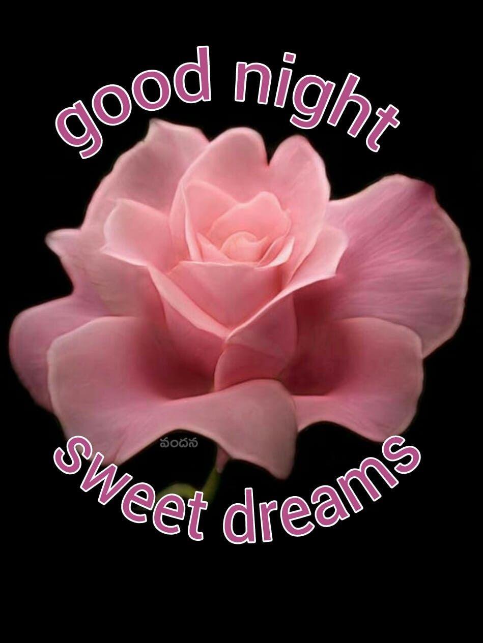 Ah Sweet Dreams Good Night Sweet Dreams Good Night Flowers Good Night Wishes