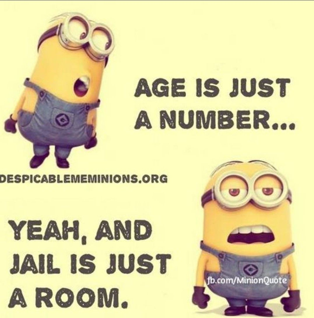 Pin by Alexis Taylor uhrich on Minions | Funny minion memes ...