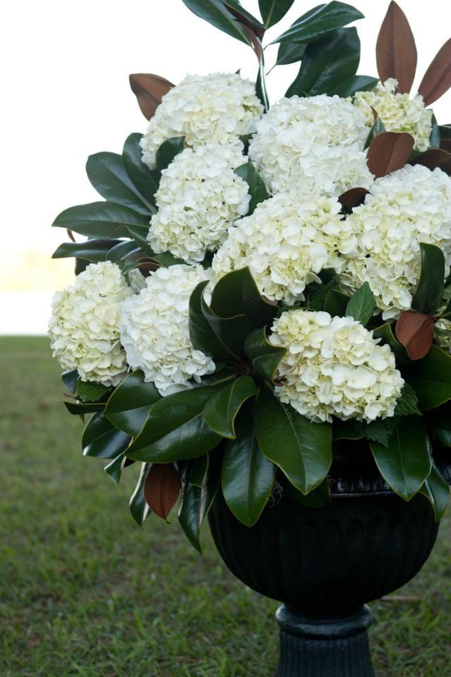 Altar Arrangements Of White Hydrangeas And Magnolia Greenery Hydrangea Flower Arrangements Beautiful Hydrangeas Flower Arrangements