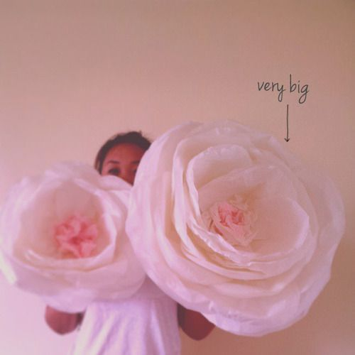 Giant tissue flowers wedding galore pinterest tissue flowers giant tissue flowers mightylinksfo Images