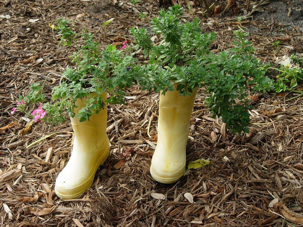 Creative Planter Ideas Container Florida Gardening Forum Gardenweb