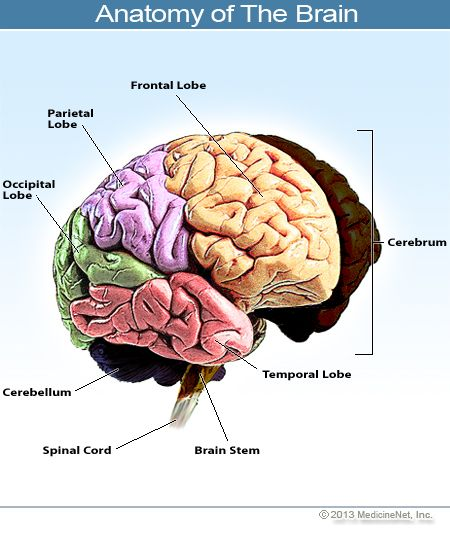 Types Causes And Symptoms Of Stroke | stroke recovery | Pinterest