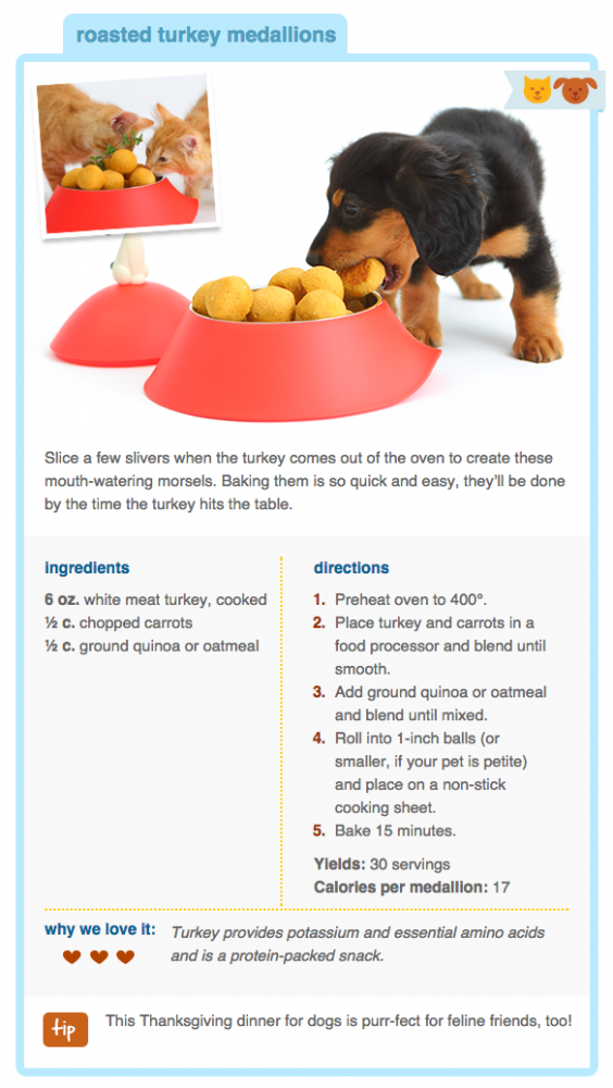 Easy Thanksgiving Treats For Your Dog Dog food recipes